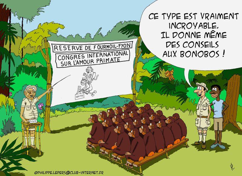 humour-coquin-83-l-amour-primate.jpg